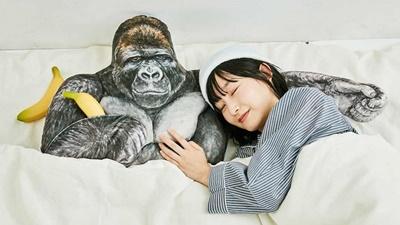 イケメンゴリラが心地よい眠りをサポート